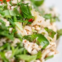 How to Make Easy Authentic Chicken Larb Gai Recipe