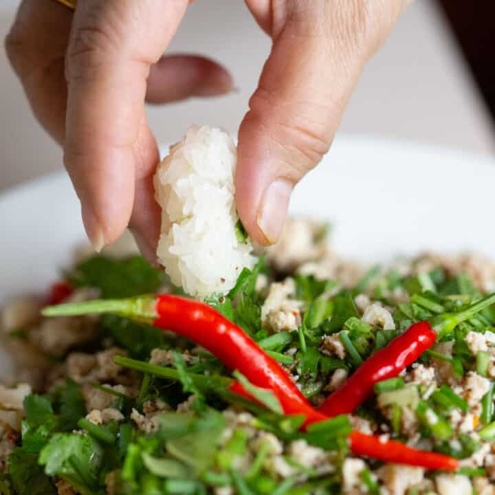 Easy Authentic Chicken Larb Gai Recipe