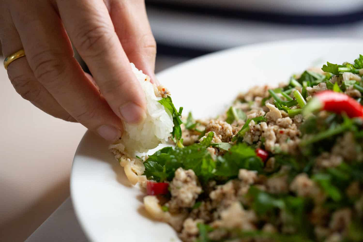 laos larb with hands grabbing portion