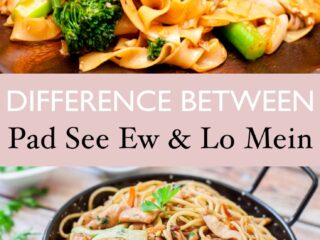difference between pad see ew and lo mein