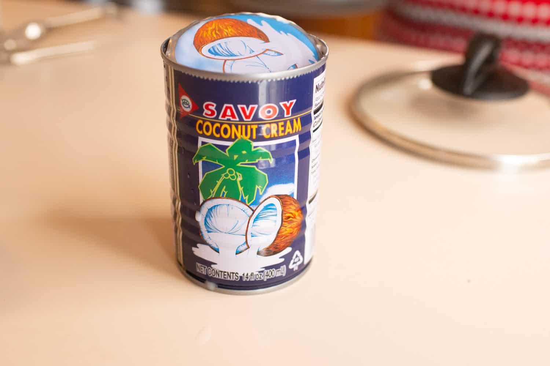 coconut cream for thai pumpkin custard