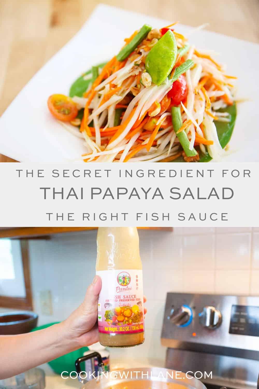 Padaek ingredient in Lao and Thai food
