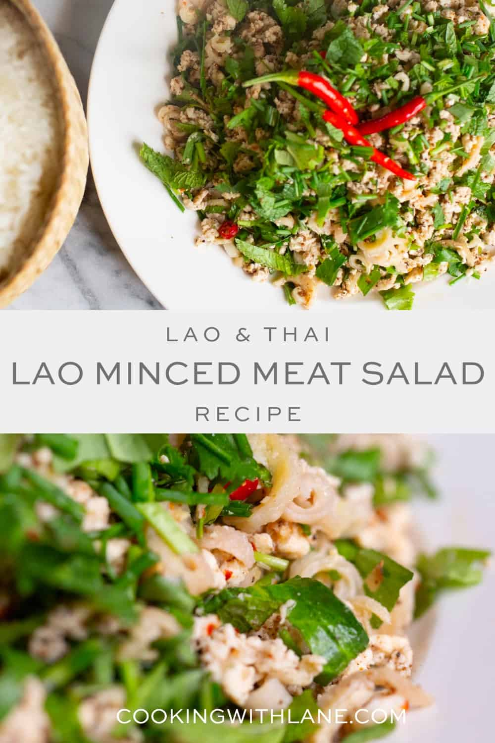 Thai and Lao larb dish
